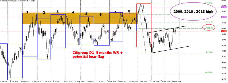 week13 Citigroup D1 8 months WR8D1B + bear flag 270314