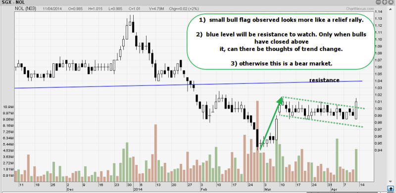week16 NOL small bull flag 120414