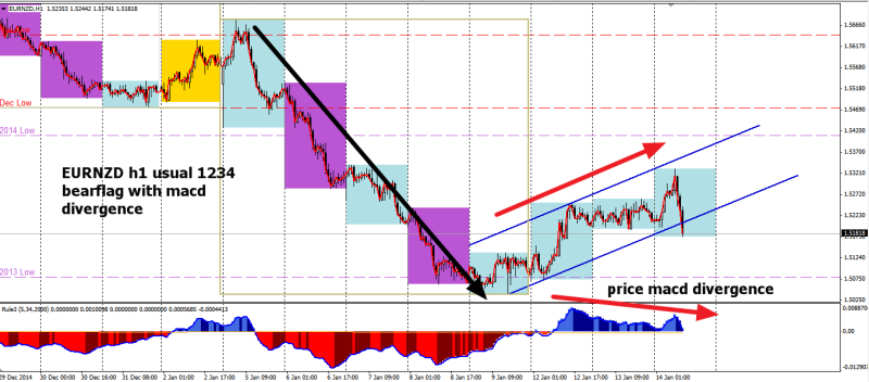 week3 EURNZD h1 1234 bear flag divergence 140115