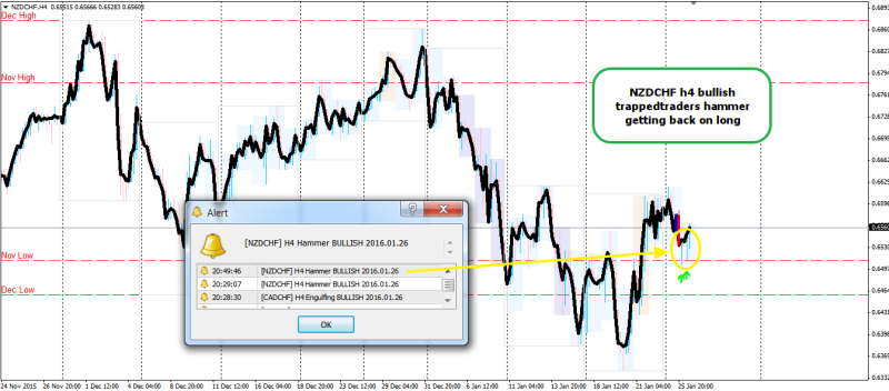 week4 nzdchf h4 long trappedtraders 260116