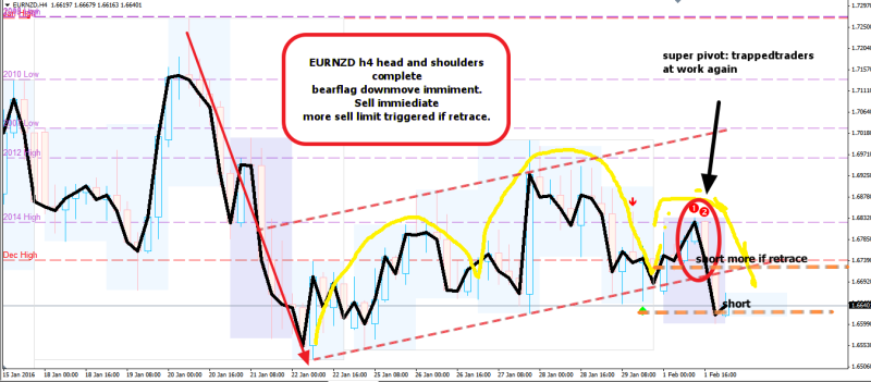 week5 EURNZD h4 hns super pivot 020216